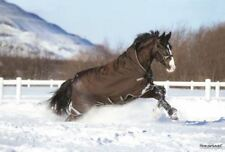 Horseware Pferdedecken aus Nylon