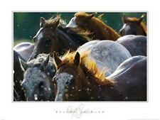 Splash 'n Dash by David Stoecklein Art Print Horse Farm Cowboy Poster 27x36