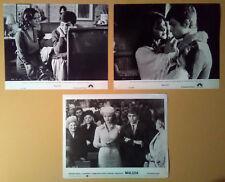 Photo Lot~ MALIZIA ~1973 ~Laura Antonelli~Alessandro Momo~Tina Aumont~Turi Ferro