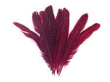 1/4 Lb - Red Polka Dot Guinea Fowl Wing Quills Wholesale Feathers (Bulk)