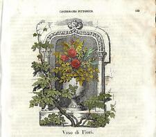 Stampa antica VASO DI FIORI botanica Cosmorama 1841 Old antique print