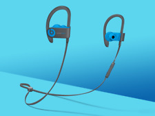 Beats by Dr. Dre Powerbeats3 Wireless Ear-hook Headphones - Flash Blue