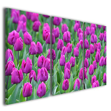 Stampe su tela canvas fiori tulipani Holland tulips quadri moderni ® quality