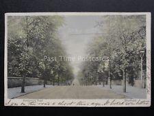 Yorkshire SHEFFIELD Montgomery Road c1904 Postcard by Stewart & Woolf 222