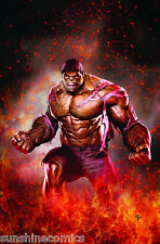 Incredible Hulk Poster by Adi Granov Marvel Comics NEW SEALED