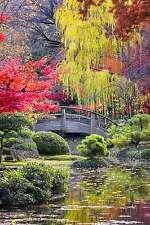 STUNNING JAPANESE GARDEN LANDSCAPE CANVAS #287 QUALITY CANVAS WALL ART A1