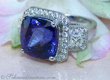 Ein Juwel: AAA Tansanit Ring mit Brillanten & Diamanten, 13.54 ct. WG750 30.000€