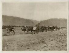 Photo Lehnert et Landrock Argentique Vers 1920