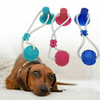 Multifunction Pet Molar Bite Toy Interactive Fun Pet Toys with Suction Cup Dog