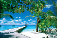 1000 Pieces Adult Puzzle Set Seaside Bridge Palm Trees Jigsaw Difficult Puzzle