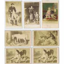 CDV Job Lot of 7 x Carte Visite Photographs of Paintings Featuring DOGS