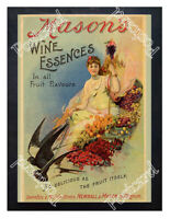 Historic Mason's Wine Essences, Newball & Mason c.1900 Advertising Postcard 2