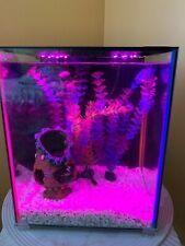 Top Fin® Dazzle Aquarium Starter Kit - 8 Gallon, 7 Color Changing LED + more