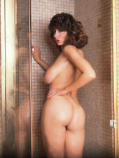 Christy CANYON VINTAGE NUDE!! 8.5 X 11 BEAUTIFUL QUALITY GUARANTEED!!