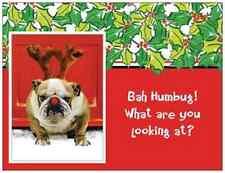 20 CHRISTMAS Bull Dog RUDOLPH Bulldog REINDEER Humorous Greeting Post Cards