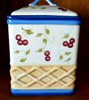 INSPIRADO Collecton Cookie Jar StoneLite Clay Hand Painted 7x6x10 inches