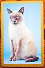 CAT - ELEGANT SIAMESE ON BLUE- SINGLE VINTAGE SWAP PLAYING CARD