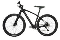 NEW 29er Carbon Bike MTB Complete Mountain Bicycle Wheels 11s Fork Hardtail 17.5
