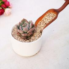 Ornament Plants Bonsai Soil Spoon Shovel Gardening