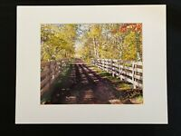 11 X 14 Photo in matted-signed by photographer Marie Whitton-One Lane Rd -Autumn