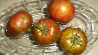 Dwarf Pit Viper Tomate Tomaten Samen neue Ernte 2020  bio Anbau Nr.187