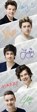 One Direction Band Door Poster Print, 21x62