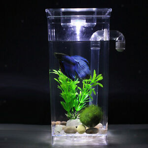Decorative LED   Tank Small Aquarium Desktop Kids Goldfish Bowl w/ Plants