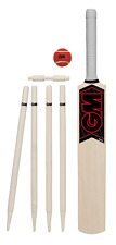 GM MANA YOUNGSTERS CRICKET SET