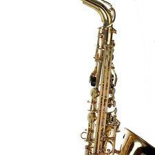 HB Professional Alto Saxophone Yellow Brass and Gold Lacquer Finish Great Offer
