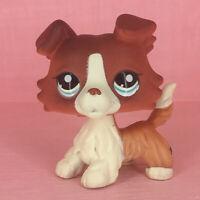 LPS #1542 Littlest Pet Shop Toys Brown Collie Dog Puppy Figure Rare Girls Kids