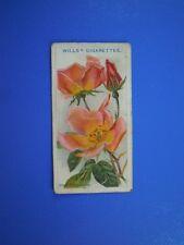 ORIGINAL CIGARETTE CARD: Wills - Roses - Irish Elegance No.52