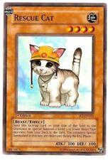 RESCUE CAT COMMON FET-EN033 NEAR MINT YUGIOH