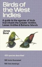 Birds of the West Indies A Guide to the species of birds that inhabit the Gre...