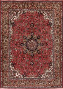 8x11 Vintage Traditional Floral Area Rug Oriental Hand-Made Home Decor Carpet