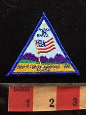 Senior Camporee Patch AMERICA THE BEAUTIFUL Girl Scouts 1993 USA FLAG  C76M