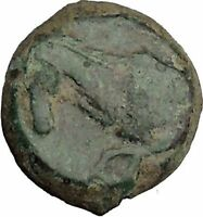 PANORMOS Palermo Sicily 336BC Ancient Greek Coin APOLLO Cult Horse i36985