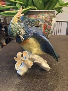 Ens Kakadu Vogel Figur Porzellanfigur 22 cm Nummer 7337