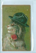 UNSIGNED BOULANGER VALENTINE CAT IN HAT POSTCARD 1907