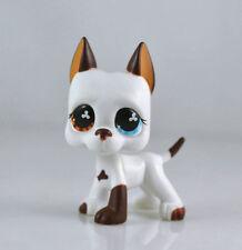 #577 Rare LPS Littlest Pet Shop White & Brown Great Dane DOG Puppy Blue Eye TOY