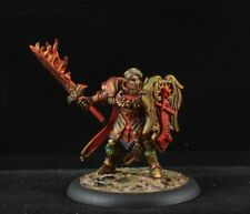 Painted Almaran the Gold, Paladin from Reaper Miniatures male D&D character