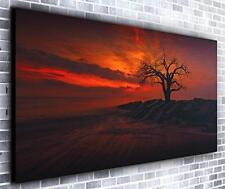 Red Dusk Wall Décor Panoramic Canvas Wall Art Print Framed XXL 55 inch x 24 inch