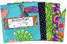 "Wilmington Rainbow Flight by Hello Angel 508 584 508 -  5"" Squares"