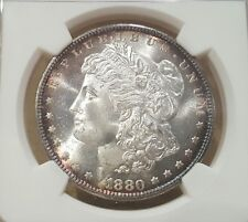 1880 S MORGAN DOLLAR GRADED MS 66 BY NGC!!!!!