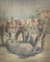 K0459 Allevatori marchiano a fuoco il bestiame - Stampa antica