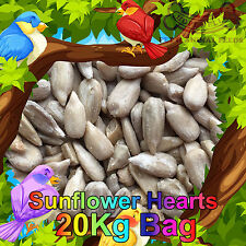 20KG Sunflower Hearts Premium Bakery Grade Dehulled Kernels for Wild Bird Food