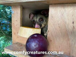 Premium possum nesting box. Fully assembled from marine grade hardwood.