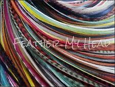 """16 Pc Feather Hair Extensions 9""""-12"""" (23-30cm) Long Salon Quallity  Accessory"""