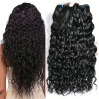Virgin Brazilian Water Wave Human Hair 1/3Bundles Wet and Wavy Curly Human Hair