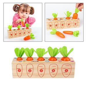 Holz Zupfen Karotte Spielzeug Speicher Puzzle kinder Größe und Form Sortierung