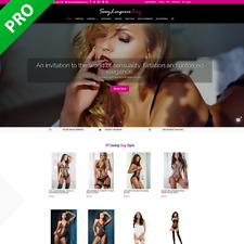 Professional Lingerie Dropshipping Store Dropship Turnkey Business Website